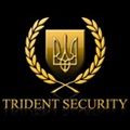 Trident Security Solutions Ltd